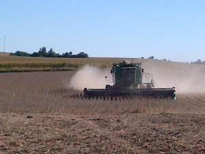 Harvesting Soya